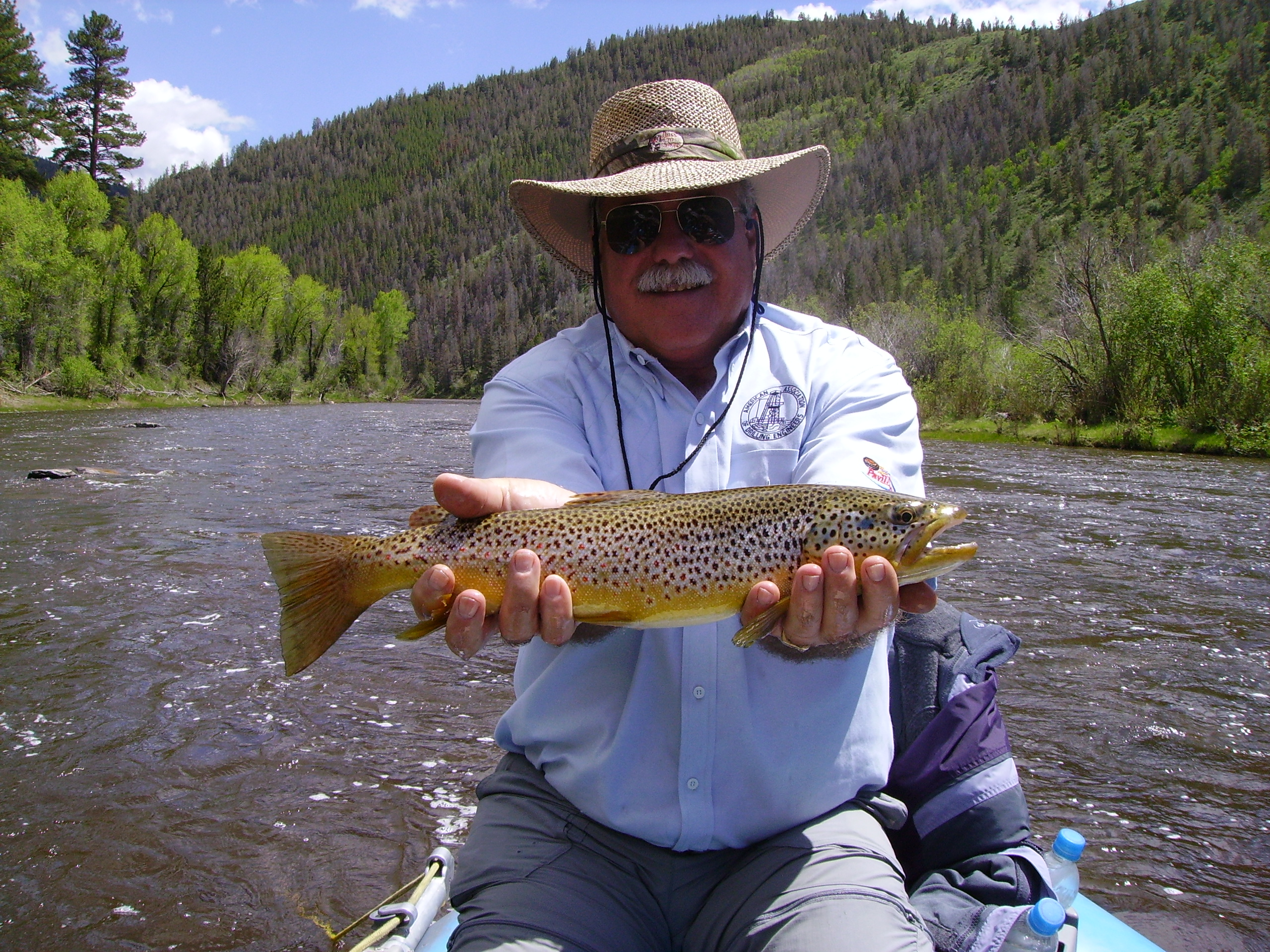North platte encampment river two dogs guide service for Wyoming fly fishing